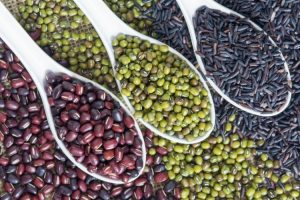 plant proteins alternatives to whey