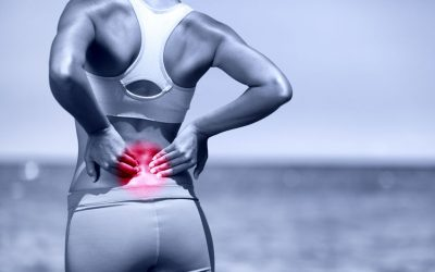 Back Pain Exercise Guide
