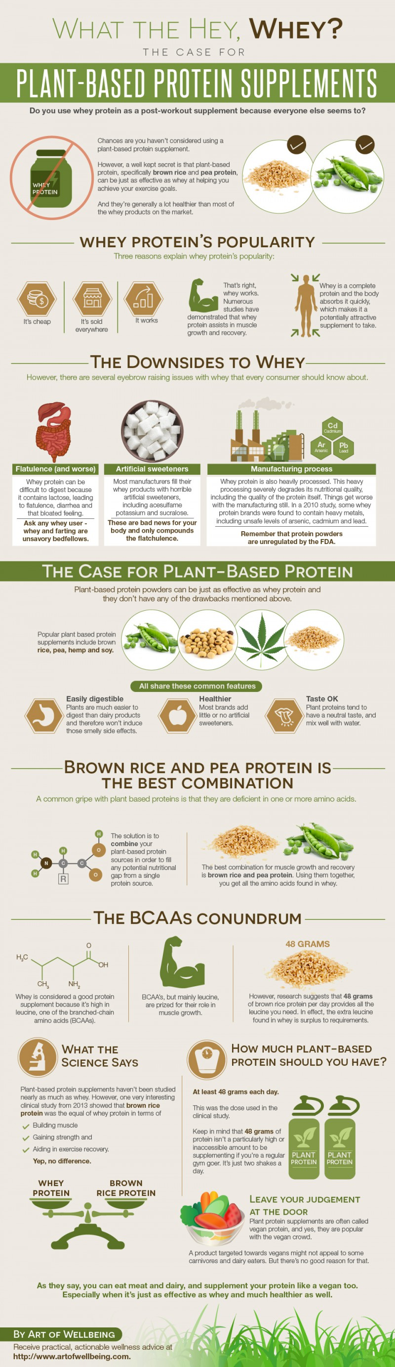 Plantbased protein infographic